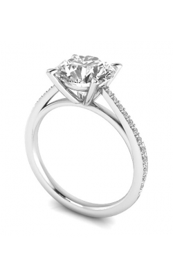 Custom 14K Gold Diamond  Ring W Side Diamonds product image