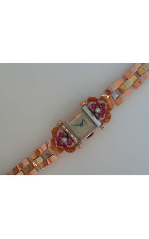 EST-WATCHDIARUBY product image